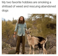 Weed: My two favorite hobbies are smoking a  shitload of weed and rescuing abandoned  dogs
