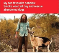 smoking weed: My two favourite hobbies:  Smoke weed all day and rescue  abandoned dogs
