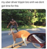 "Instagram, Meme, and Memes: my uber driver trippin bro smh we dont  got time for this @hormotional was voted ""best meme page on instagram""! follow before they go private!🔥"