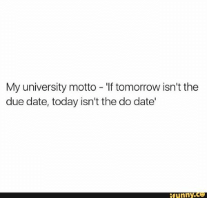 studentlifeproblems:  If you are a student Follow @studentlifeproblems: My university motto - 'If tomorrow isn't the  due date, today isn't the do date'  funny.c studentlifeproblems:  If you are a student Follow @studentlifeproblems