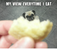Memes, 🤖, and Looking: MY VIEW EVERYTIME I EAT Look familiar?