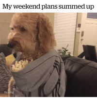 My Weekend Plans
