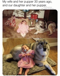 Blessed, Memes, and Reddit: My wife and her pupper 30 years ago,  and our daughter and her pupper  @DrSmashlove  Pic: reddit u/land0man THIS IS BLESSED AS HECK 😢😍❤️