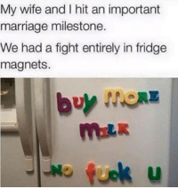 milestone: My wife and I hit an important  marriage milestone.  We had a fight entirely in fridge  magnets.