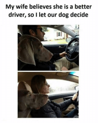 Memes, Wife, and 🤖: My wife believes she is a better  driver, so I let our dog decide Let the dog be the judge