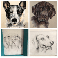 Wife, My Wife, and Puppers: My wife draws rarepuppers