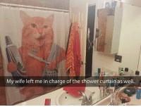 9gag, Memes, and Shower: My wife left me in charge of the shower curtain as well. Raise the shower certain for the soap opera Follow @9gag showercurtain