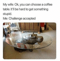 "Memes, Coffee, and Wife: My wife: Ok, you can choose a coffee  table. It'll be hard to get something  stupid  Me: Challenge accepted <p>I aim for stupidity via /r/memes <a href=""https://ift.tt/2jKCQy5"">https://ift.tt/2jKCQy5</a></p>"