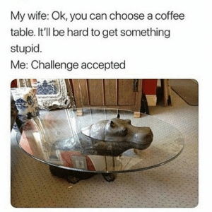Coffee, Wife, and Accepted: My wife: Ok, you can choose a coffee  table. It'll be hard to get something  stupid  Me: Challenge accepted Challenge accepted