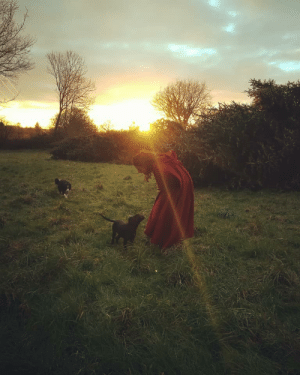 """Puppy, Wife, and Teaching: My wife, the alpha female red riding hood of the pack, teaching the new puppy to sit. """"But the grass is wet !"""" says-he. (OC)"""