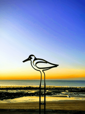 Beach, Giant, and Water: My wife took a photo of a bird sculpture in-front of the beach and the perspective made it look like a giant bird. Bonus points for its stand looking like a reflection in the water on the sand.