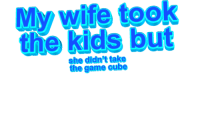 The Game, Game, and Kids: My wife took  the kids but  she didn't take  the game cube