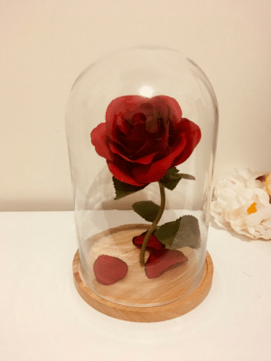 School, Beauty and the Beast, and Princess: My wife was Belle in her school musical of Beauty and the Beast 12 years ago, so I made her a little surprise to remind her of the princess she is.