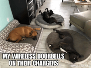 Chargers, Wireless, and Www: MY WIRELESS DOORBELLS  ON THEIR CHARGERS  www.fibrok Dump