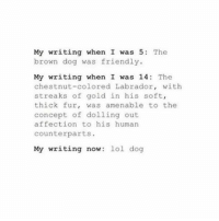 Dog, Gold, and Human: My writing when I was 5: The  brown dog was friendly.  My writing when I was 14 The  chestnut-colored Labrador, with  streaks of gold in his soft,  thick fur, was amenable to the  concept of dolling out  affection to his human  counterparts.  My writing now  lol dog 0___0