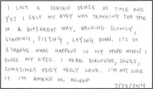 """myarmisnotalilactree:A participant chronicle from Marina Abramovic's """"512 Hours: myarmisnotalilactree:A participant chronicle from Marina Abramovic's """"512 Hours"""