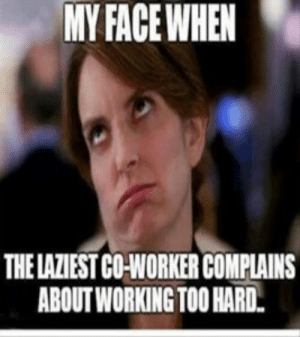 Funny, Memes, and Work: MYFACE WHEN  THE LAZIEST CONORKER COMPLAINS  ABOUT WORKING TOO HARD 100+ Funny Work Memes – Work Memes Collections