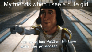 me irl: Myfriends when I see a cute girl  The ogre has fallen in love  with the princess! me irl