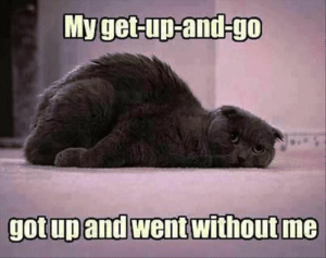 Chronic Illness and Chronic Pain: Myget-up-and-go  gotup and went without me Chronic Illness and Chronic Pain