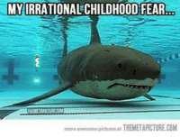 Awesomeness Pictures: MYIRRATIONALCHILDHOOD FEAR  more awesome pictures at THEMETAPICTURECOM