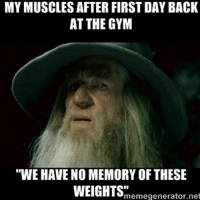 """That feel 😩😂 @officialdoyoueven: MYMUSCLES AFTER FIRSTDAY BACK  AT THE GYM  """"WE HAVE NO MEMORY OF THESE  WEIGHTS""""  meme generator net That feel 😩😂 @officialdoyoueven"""