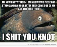 The Bad Joke Eel will make you laugh!