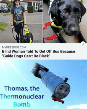 "My gears are grinded: MYPETSDOG.COM  Blind Woman Told To Get Off Bus Because  ""Guide Dogs Can't Be Black""  Thomas, the  Thermonuclear  Bomb My gears are grinded"