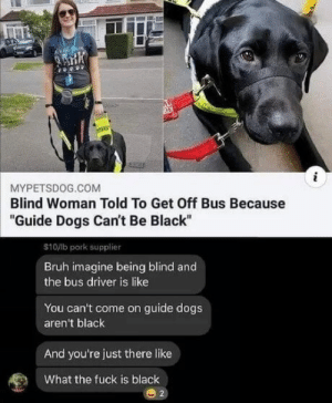 "Makes you think: MYPETSDOG.COM  Blind Woman Told To Get Off Bus Because  ""Guide Dogs Can't Be Black  $10/lb pork supplier  Bruh imagine being blind and  the bus driver is like  You can't come on guide dogs  aren't black  And you're just there like  What the fuck is black Makes you think"
