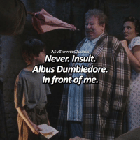"Dumbledore, Memes, and Never: MYPOTTERQUOTES  Never. Insult.  Albus Dumbledore.  In front of me. Add ""in the chamber of secrets"" to the last song you listened to!!😝😍 • Follow @mypotterfacts @bookgasms and @mypotterscenes for more of my posts!⚡️"