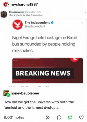 Af, Alive, and News: mysharona1987  Bim Adewunmi @bimadew 12h  what a time to be alive & conscious  The Independent  @Independent  Nigel Farage held hostage on Brexit  bus surrounded by people holding  milkshakes  BREAKING NEWS  honeybaublebee  How did we  get the universe with both the  funniest and the lamest dystopia  8,031 notes 27+ Astounding Tumblr Posts That Are Hilarious AF – Sarcasm