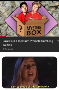 Ricegum: MYSTERY  BOX  Jake Paul & RiceGum Promote Gambling  To Kids  2.7M views  I am so proud of this community