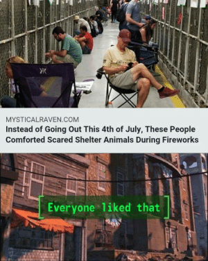 Animals, Dank, and Memes: MYSTICALRAVEN.COM  Instead of Going Out This 4th of July, These People  Comforted Scared Shelter Animals During Fireworks  Everyone 1iked that a little late but by icametostealmemes MORE MEMES