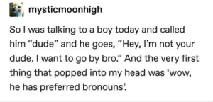 """meirl: mysticmoonhigh  So l was talking to a boy today and called  him """"dude"""" and he goes, """"Hey, I'm not your  dude. I want to go by bro."""" And the very first  thing that popped into my head was 'wow,  he has preferred bronouns'. meirl"""