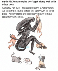 Family, Kitties, and Memes: myth #3: Xenomorphs don't get along well with  other pets  Certainly not true. If raised properly, a Xenomorph  will become a loving part of the family with all other  pets. Xenomorphs are especially known to have  an affinity with kitties. adoptdontshop xenomorph 💗