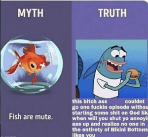 I stole this meme from instagram does this still count?: MYTH  TRUTH  this bitch ass  go one fuckin episode withou  starting some shit on God lik  when will you shut yo annoyi  ass up and realize no one in  the entirety of Bikini Bottom  likes you  couldnt  Fish are mute. I stole this meme from instagram does this still count?