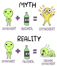 introvert: MYTH  XX  INTROVERT ALCOHOL  EXTROVERT  REALITY  INTROVERT ALCOHOL  DRUNK  TNTROVERT