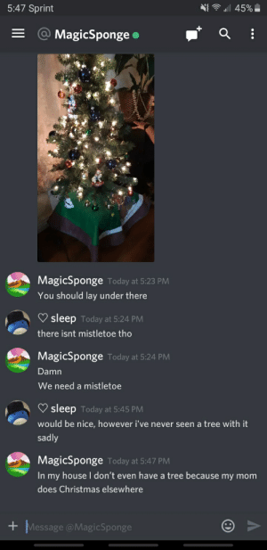 a keeper imo: N{ ê u  5:47 Sprint  45%|  = @ MagicSponge •  MagicSponge Today at 5:23 PM  You should lay under there  sleep Today at 5:24 PM  there isnt mistletoe tho  MagicSponge Today at 5:24 PM  Damn  We need a mistletoe  V sleep Today at 5:45 PM  would be nice, however i've never seen a tree with it  sadly  MagicSponge Today at 5:47 PM  In my house don't even have a tree because my mom  does Christmas elsewhere  + Message @MagicSponge a keeper imo
