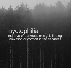 srsfunny:Anyone Else Relates To This?: (n.) love of darkness or night. finding  relaxation or comfort in the darkness srsfunny:Anyone Else Relates To This?