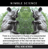 "Drugs, Memes, and News: N M BLE SC ENCE  There is a monument in Russia of a bespectacled  mouse diligently knitting a DNA strand. It's an  acknowledgement of the vital role lab mice have  played in scientific discovery and advancement.  MBLE NEWS NETWORK Prof. Nikolai Kolchanov at the Institute of Cytology and Genetics in Novosibirsk said that the monument ""symbolizes gratitude for the animal that humanity has used to study genetics, molecular and physical mechanisms of diseases, as well as for the development of new drugs."""