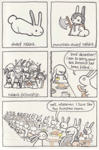 Saturday morning guest comic from the awesome Blue Dinosaur Media. I follow his comics, and you should too!: n  mountain dwarf rabbit.  dwarf rabbit.  lord denethor!  i am So sorry, your  Son boromir has  been killed...  rabbit fellowship.  well, whatever. i have like  two hundred more Saturday morning guest comic from the awesome Blue Dinosaur Media. I follow his comics, and you should too!