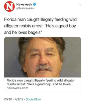 """Me🐊irl: N  Newsweek  @Newsweek  Florida man caught illegally feeding wild  alligator resists arrest: """"He's a good boy...  and he loves bagels""""  Florida man caught illegally feeding wild alligator  resists arrest: """"He's a good boy...and he loves...  newsweek.com  05:10 7/3/19 SocialFlow Me🐊irl"""