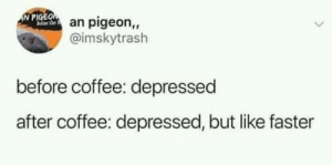 meirl: N PIGEOan pigeon,,  alas he  @imskytrash  before coffee: depressed  after coffee: depressed, but like faster meirl