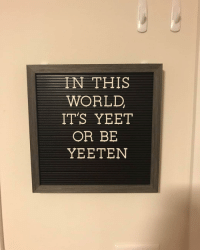 Memes, World, and Never: N THIS  WORLD,  ITS YEET  OR BE  YEETEN never forget