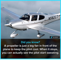 Memes, Cool, and 🤖: N592CT  VIA 8SHIT  Did you know?  A propeller is just a big fan in front of the  plane to keep the pilot cool. When it stops,  you can actually see the pilot start sweating