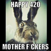 Happy 420 mother fuckers! PraiseItAndBlazeIt: HAPPY(420  MOTHER FCKERS Happy 420 mother fuckers! PraiseItAndBlazeIt