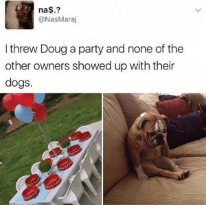 Dogs, Doug, and Funny: na$.?  @NasMaraj  Ithrew Doug a party and none of the  other owners showed up with their  dogs.