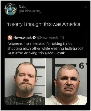 America, Drinking, and Memes: Nabi  @AlohaNabs  I'm sorry I thought this was America  N Newsweek @Newsweek 1d  Arkansas men arrested for taking turns  shooting each other while wearing bulletproof  vest after drinking trib.al/W5uRhOk  6 67 Of Today's Freshest Pics And Memes