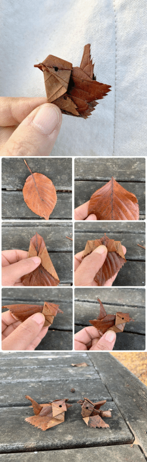 nae-design: Cutest autumn/winter leaf origami by Inori: nae-design: Cutest autumn/winter leaf origami by Inori