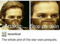 Jedi, Memes, and Star Wars: nakin.Stop panakin  taranticat  The whole plot of the star wars prequels. Posted by Elliot Bishop in our group Just Jedi Memes