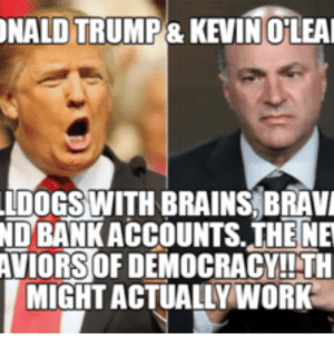 Birthday, Brains, and Donald Trump: NALD TRUMP& KEVIN OLEA  LDOGS WITH BRAINS BRAV  ND BANK ACCOUNTS.THE NE  AVIORS OF DEMOCRACY!!!TH  MIGHT ACTUALLY WORK Birthday Meme Donald Trump - Happy Birthday Messages | Happy ...